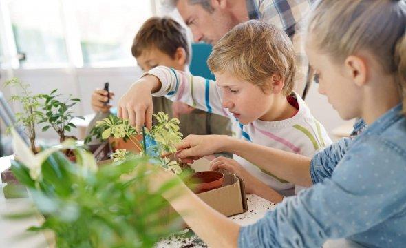 kinderen planten
